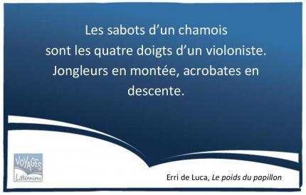 De-Luca-musique-1